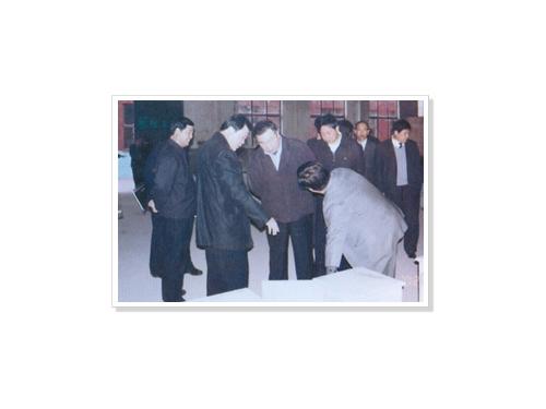 原河北省委书记王旭东在衡水市委市政府领导的陪同下来集团视察指导工作